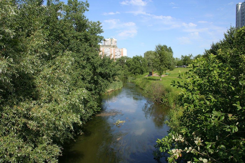 река Городня в Москве