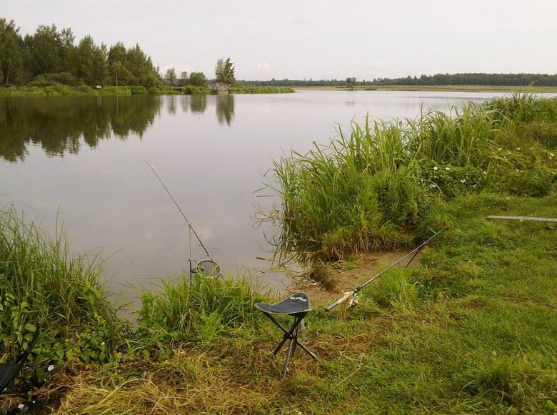 рыбалка на реке Шоша