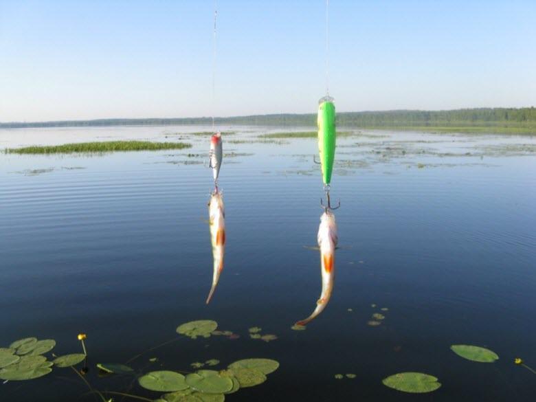 рыбалка на Тростенском