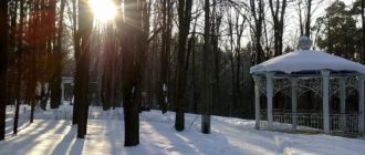 поселок Дорохово