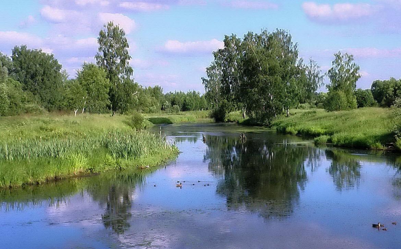 река Уча в Пушкино